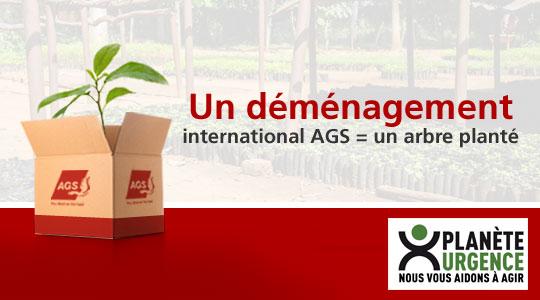 Un déménagement international = un arbre planté